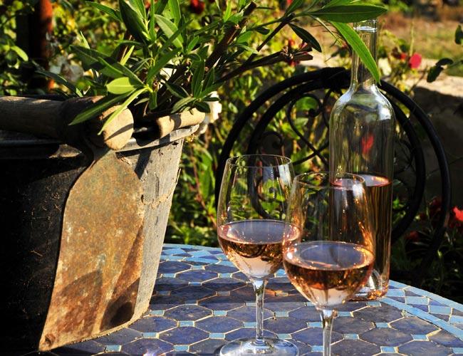 Balade en vigne