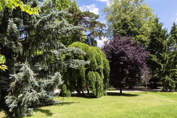 Domaine de Clairefontaine-14