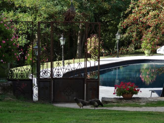 Les Gorges de l'Aveyron-8