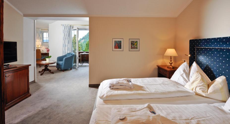Romantik SPA Hotel Seefischer am See-2