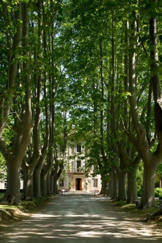 Château des Alpilles-2