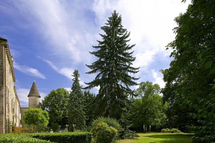 Château de Fleurville & SPA-8