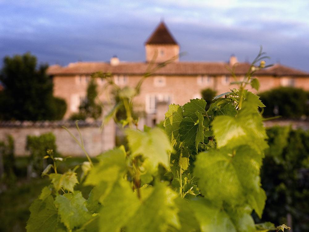 Séjour route des vins