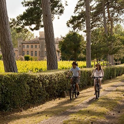 Partez sur la route des vins et découvrez la saison des vendanges