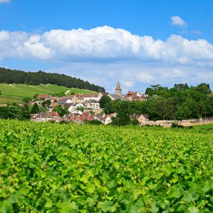 Visitez la Bourgogne !