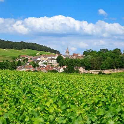 Nos restaurants en Bourgogne