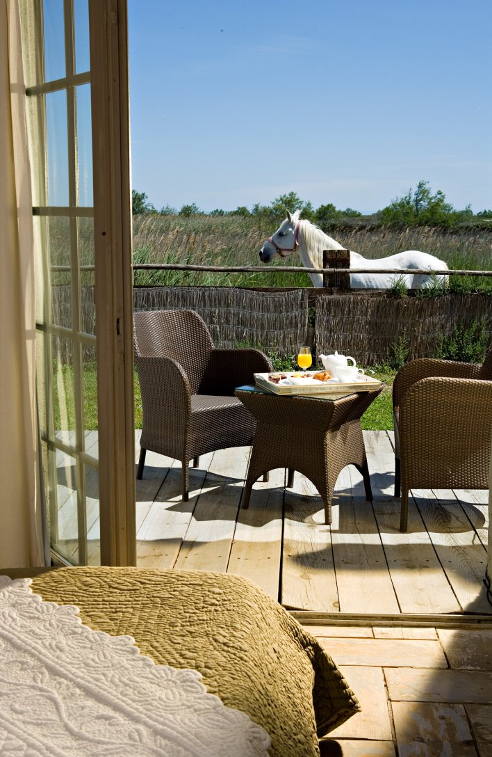 Chambre avec terrasse en pleine nature aux Arnelles, en Provence près d'Arles