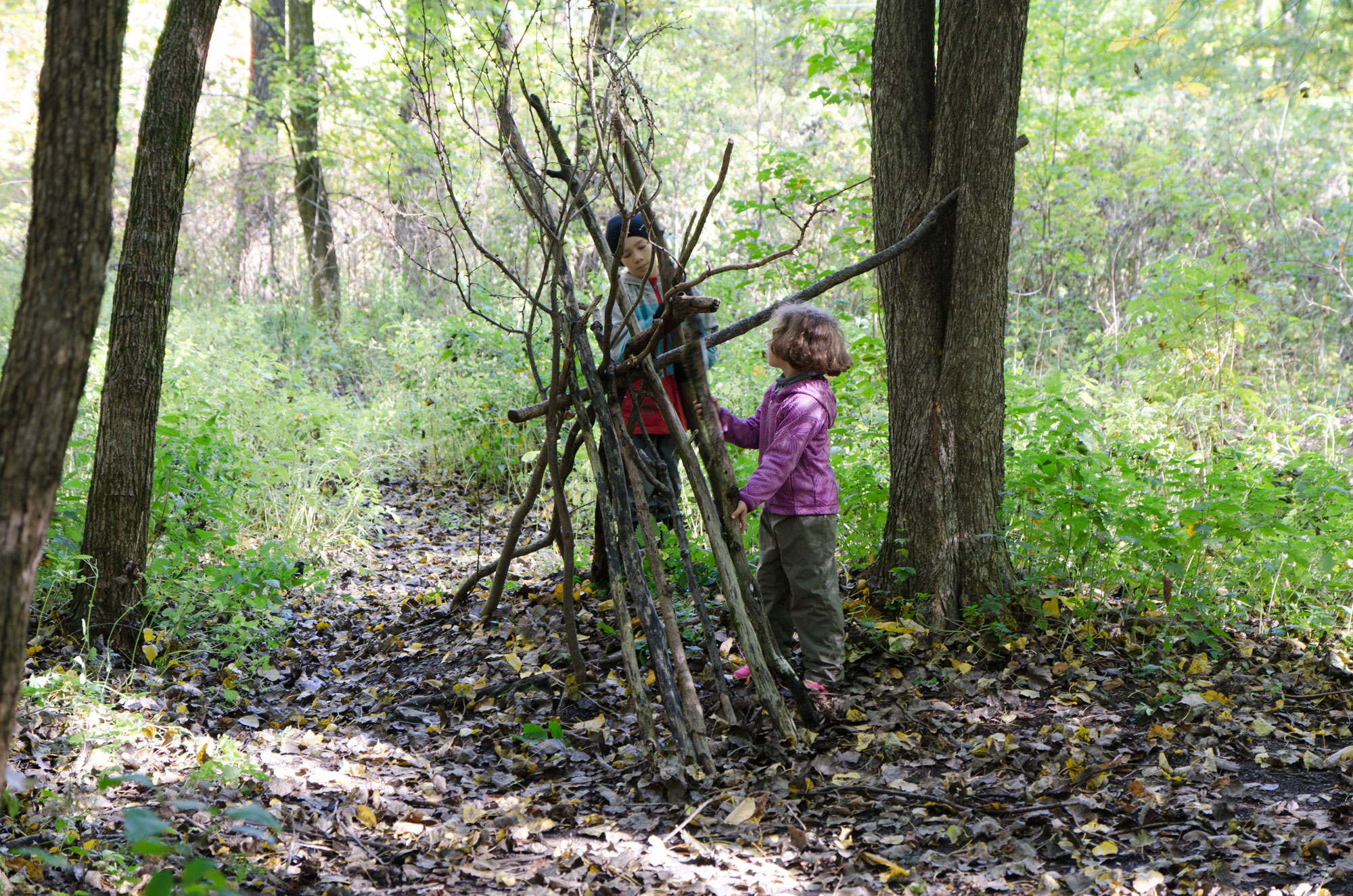Enfants en train de construire une cabane en forêt