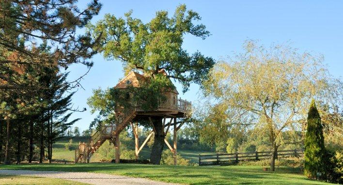 Vaste parc arboré avec chêne centenaire sur lequel est niché une cabane pour dormir
