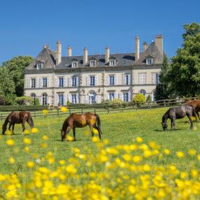 Week-end équitation: Top 7 des hôtels de charme à proximité d'un centre d'équitation