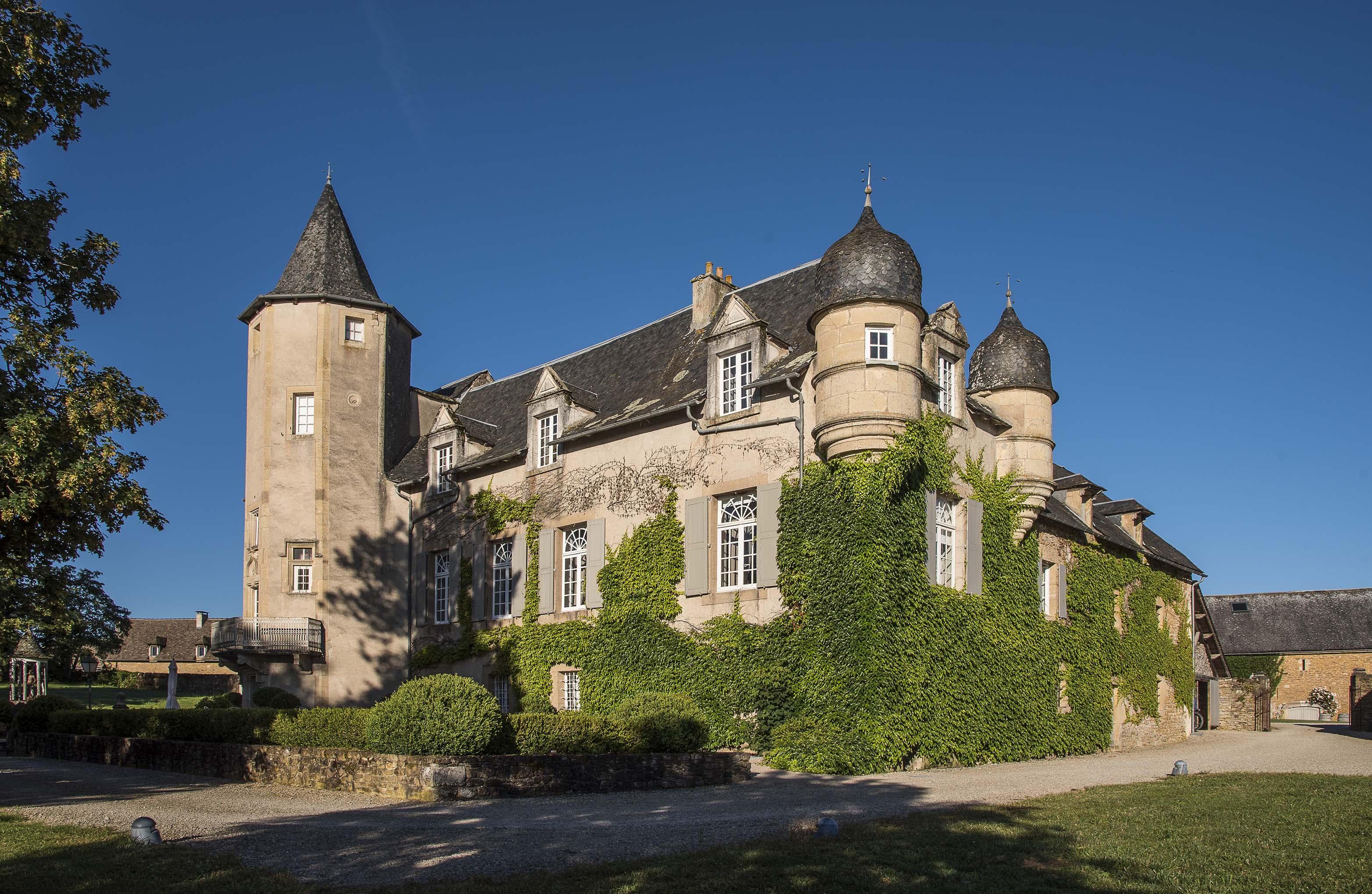 Façade d'un château recouverte de lierres