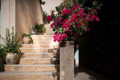 Escaliers fleuris pot en terre cuite