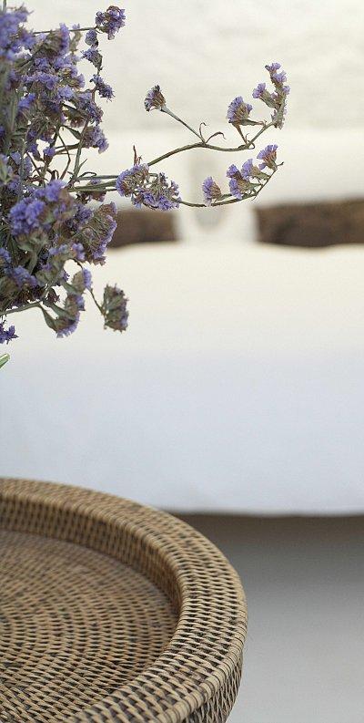 photo de détail, fleur et lit