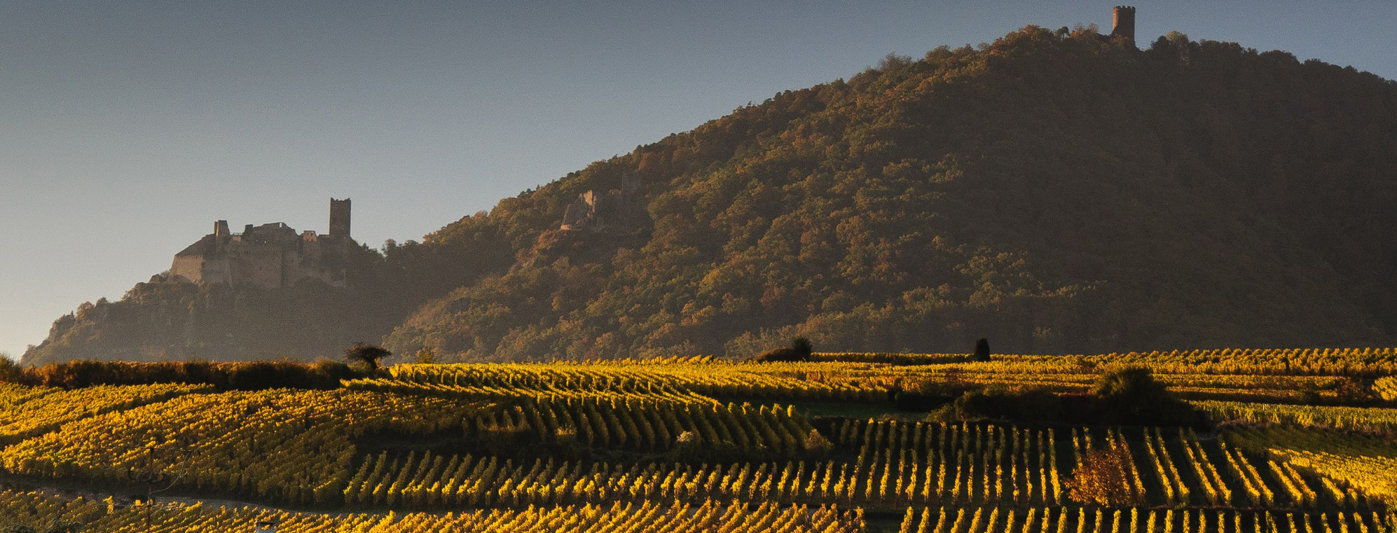Un hôtel spa en Alsace : faites une halte sur la route des vins