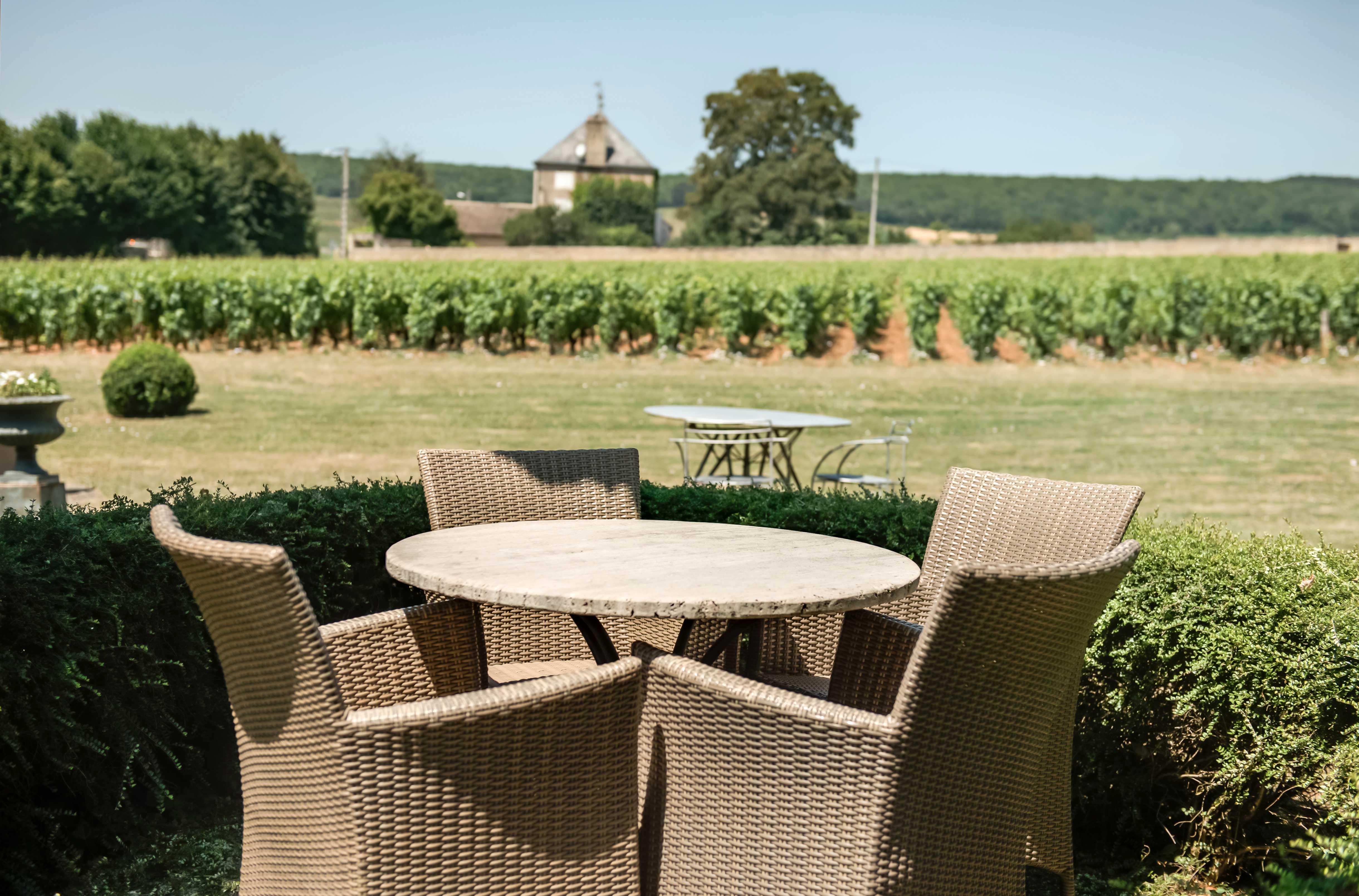 salon de jardin face à des vignes