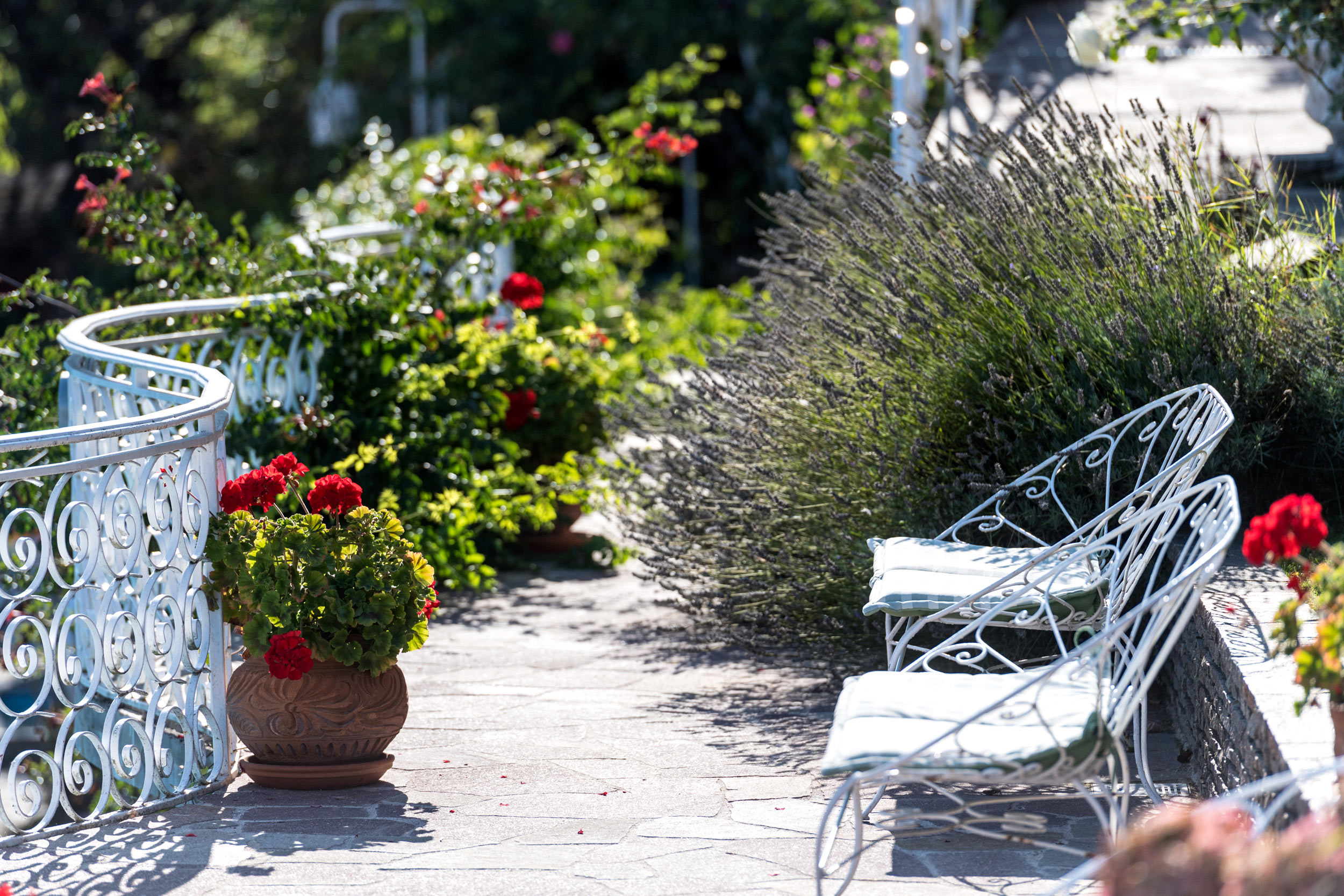 terrasse fleurie et banc en fer forgé