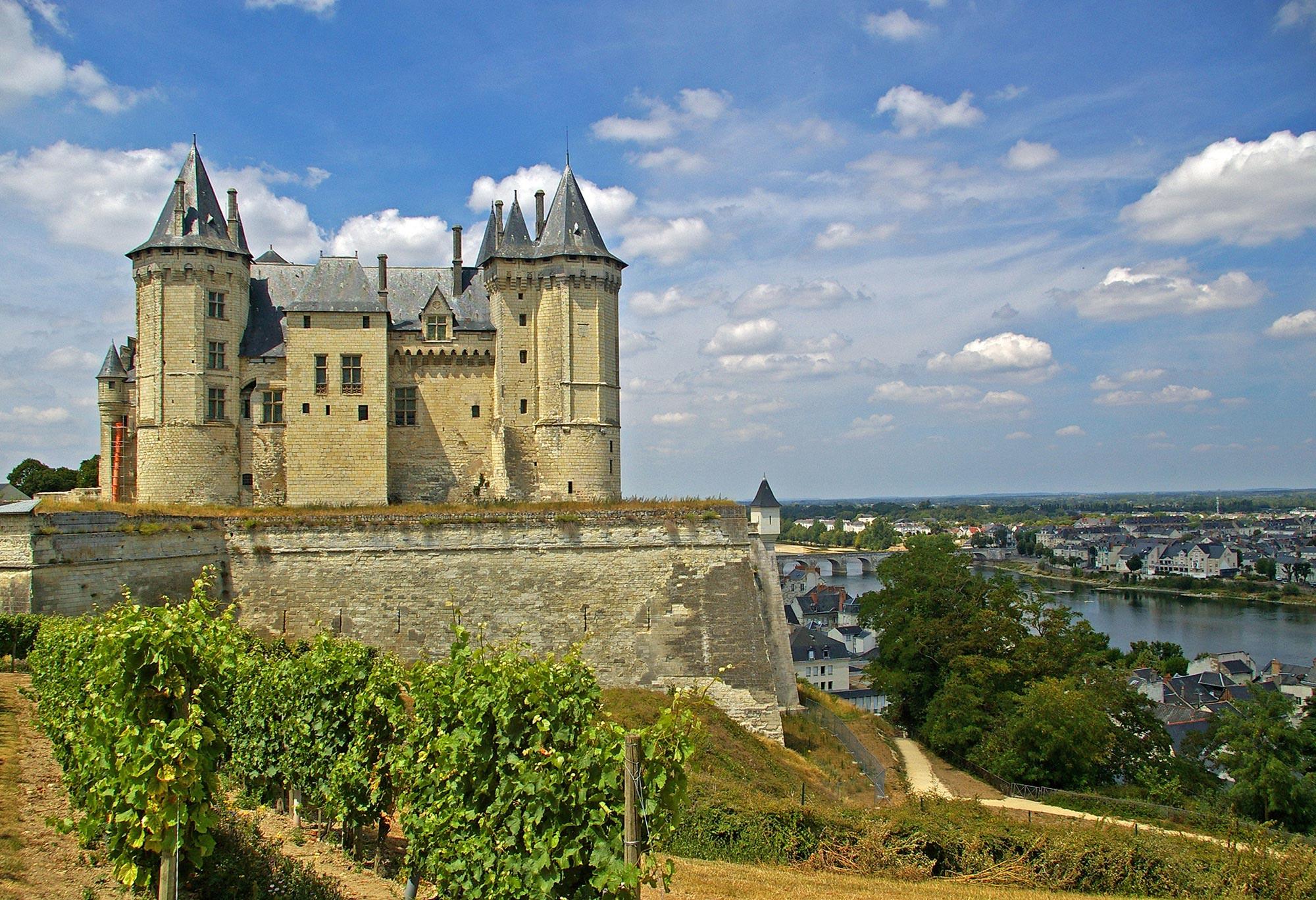 Château de Saumur surplombant la Loire, vigne sur le côté gauche