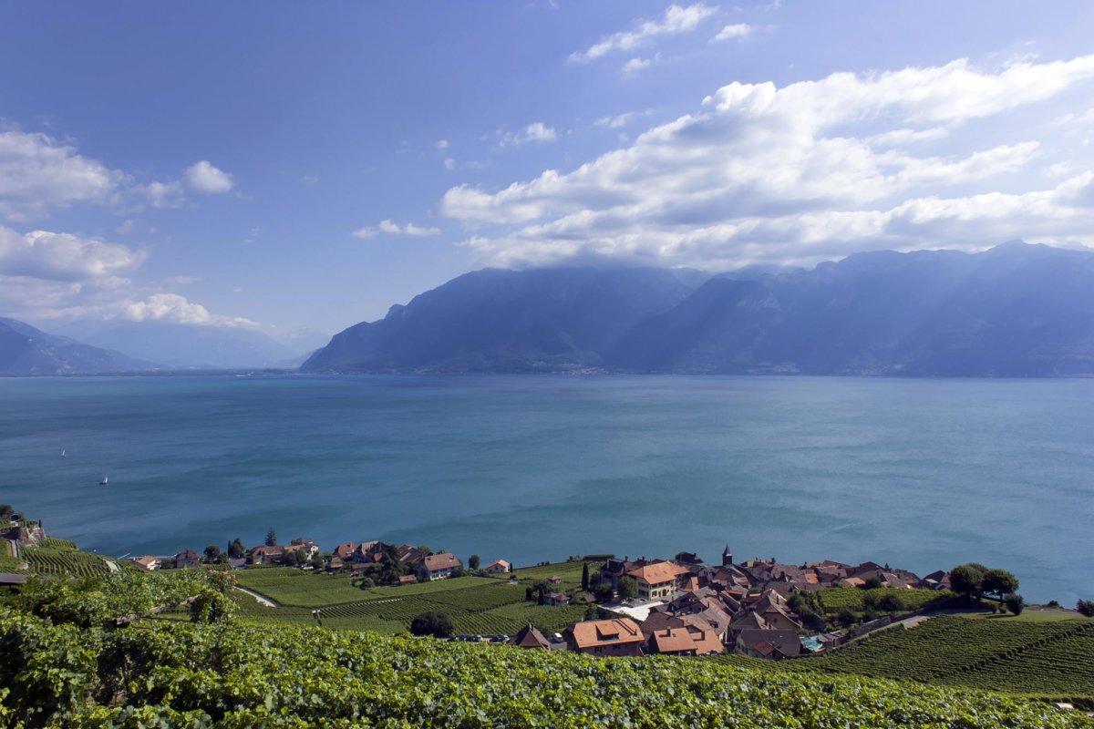 Vue sur le lac Léman, la montagne en fond de photo, vigne et maison typique au premier plan