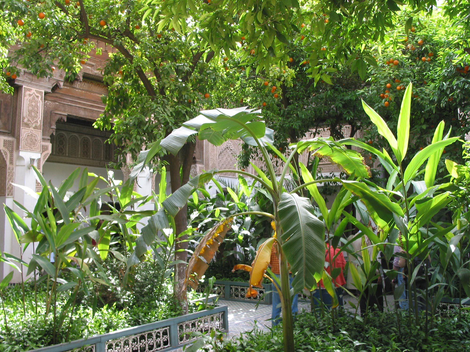 Cour intérieur avec arbustes, architecture mauresque