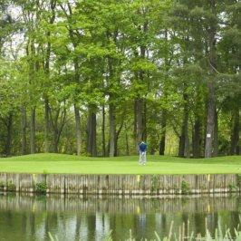Golfeur en polo bleu, vue de face, tenant son club de golf dans les deux mains prêt à tirer dans une balle