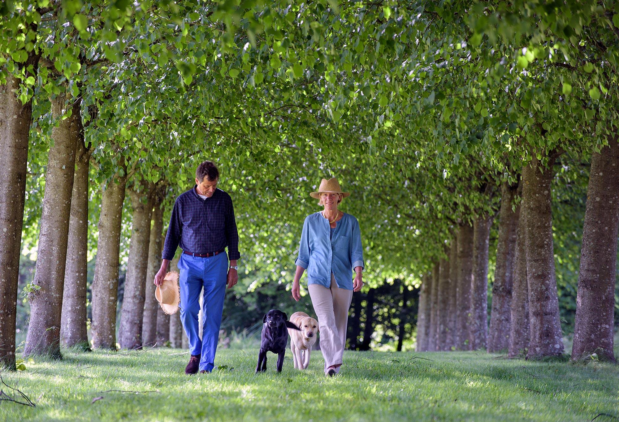 Un homme et une femme marche sous une allée d'arbre avec deux chiens