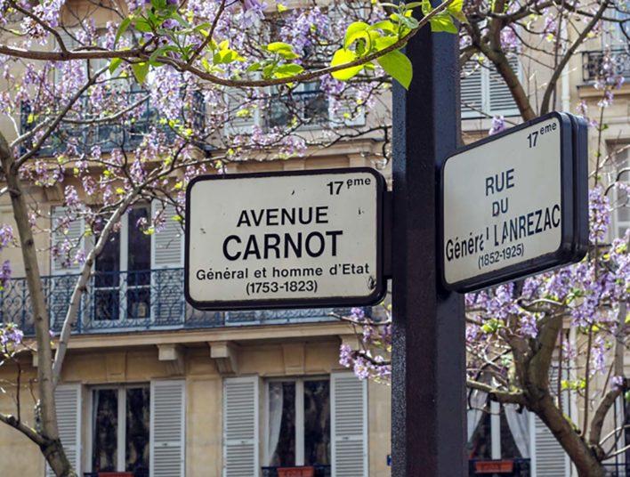 Panneaux de signalisation et arbres fleuris
