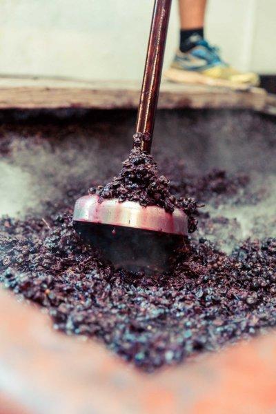 Pigeou, l'outil nécessaire au pigeage, étape de la vinification