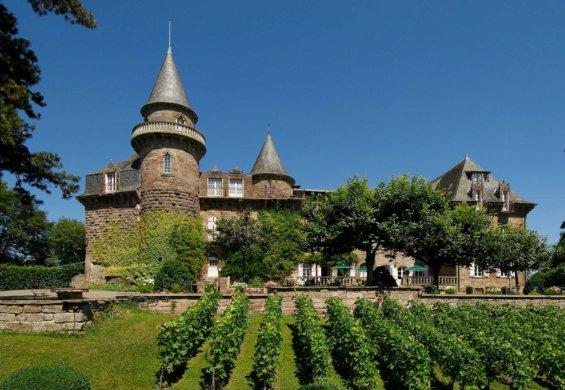 Château face à des vignes