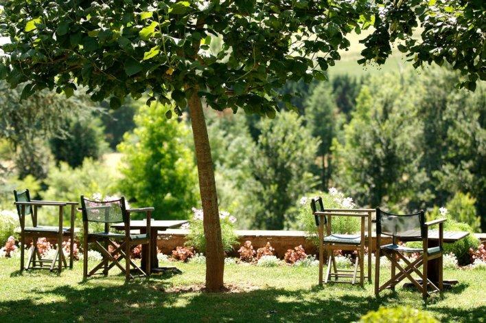 Deux chaises à l'ombre d'un arbre dans une allée arborée