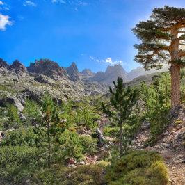 Chemin de randonnée dans un paysage rappelant la Corse.