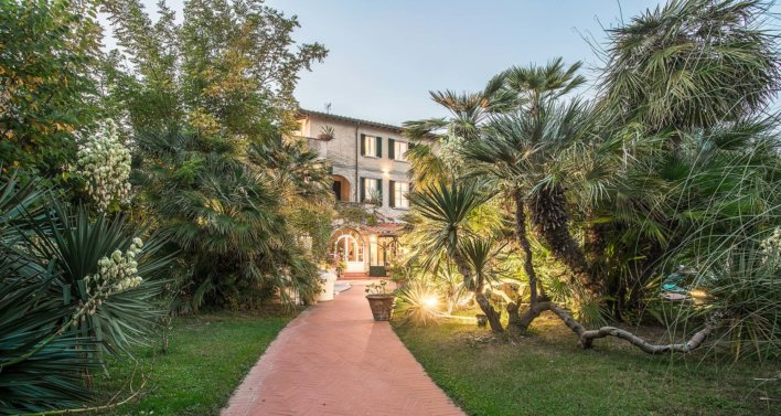 Chemin pavée sur jardin arboré type tropical