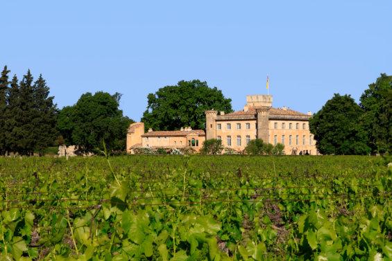 Villa provençale entourée de vignes