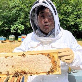 Le miel, par Takashi Kinoshita, chef du Château de Courban