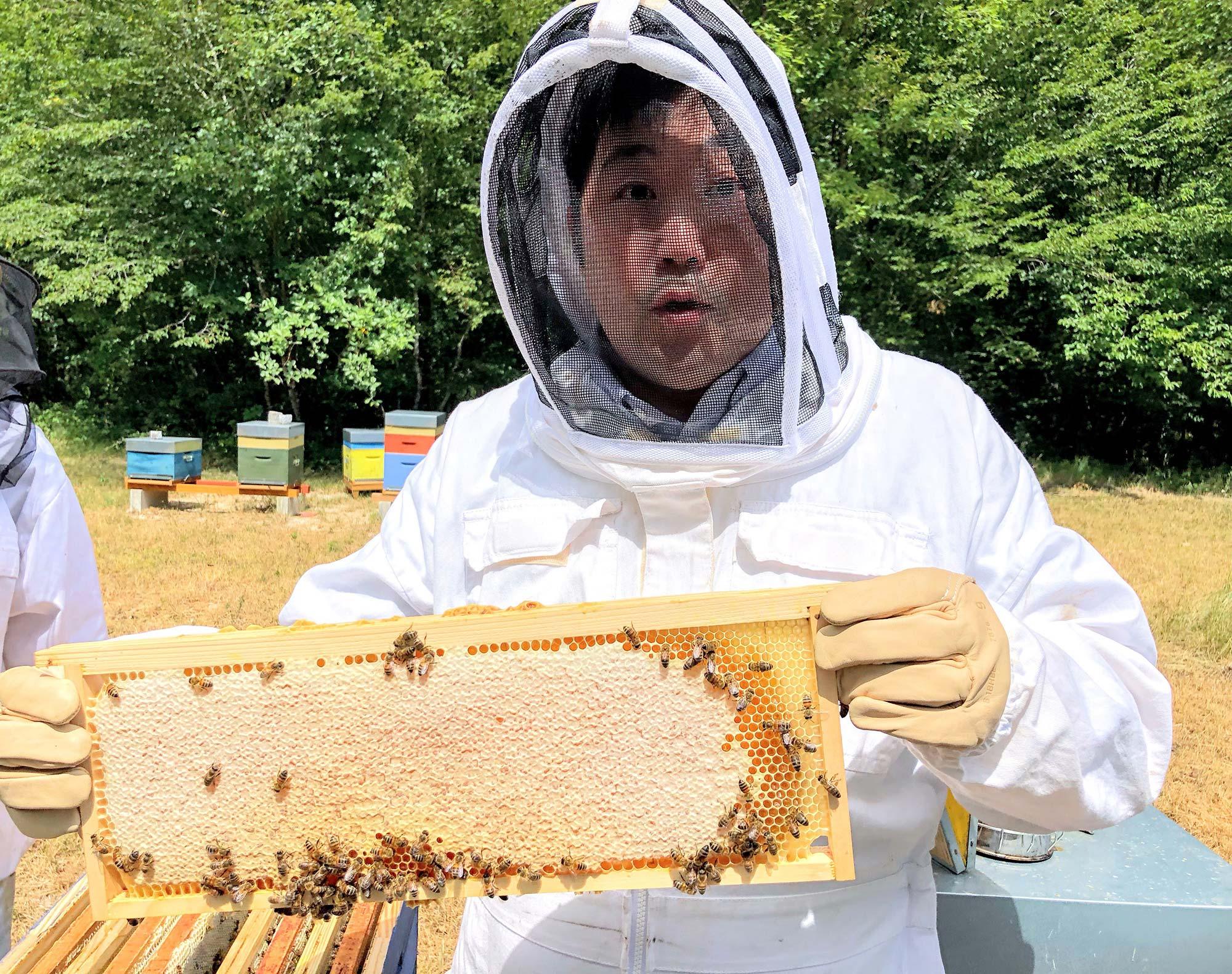 Homme dans une combinaison d'apiculteur tenant des alvéoles de miel dans les mains