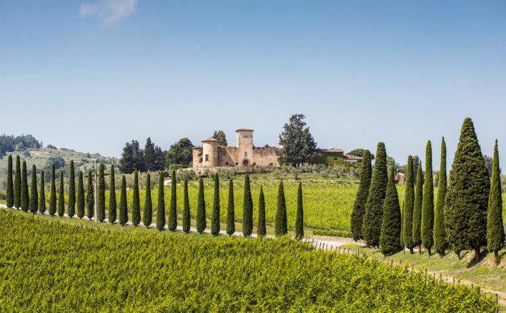 Aperçu depuis une route de l'établissement Castello Di Gabbiano