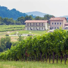 Vue sur une maison typique italienne de Lombardie en pleine campagne et vigne