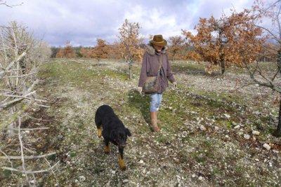 Femme se promenant dans un champs avec son chien
