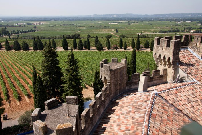 Tours crénelées avec vue sur les vignobles