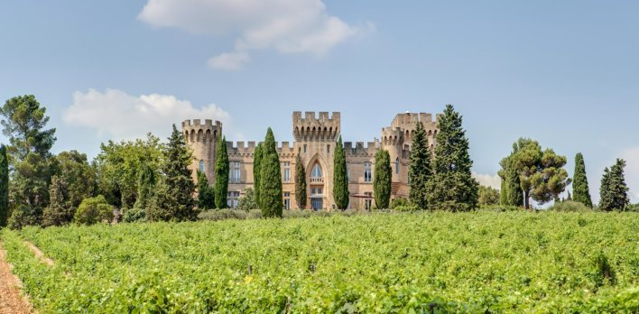 Château médiéval au cœur des vignes