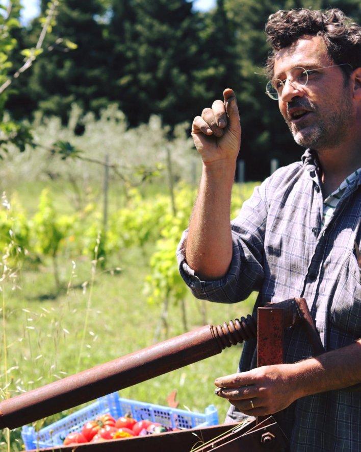Un homme dans en pleine nature avec une cagette de tomates bios