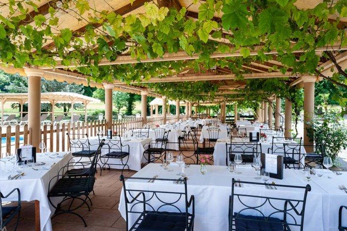 Terrasse sous des arbres de vignes
